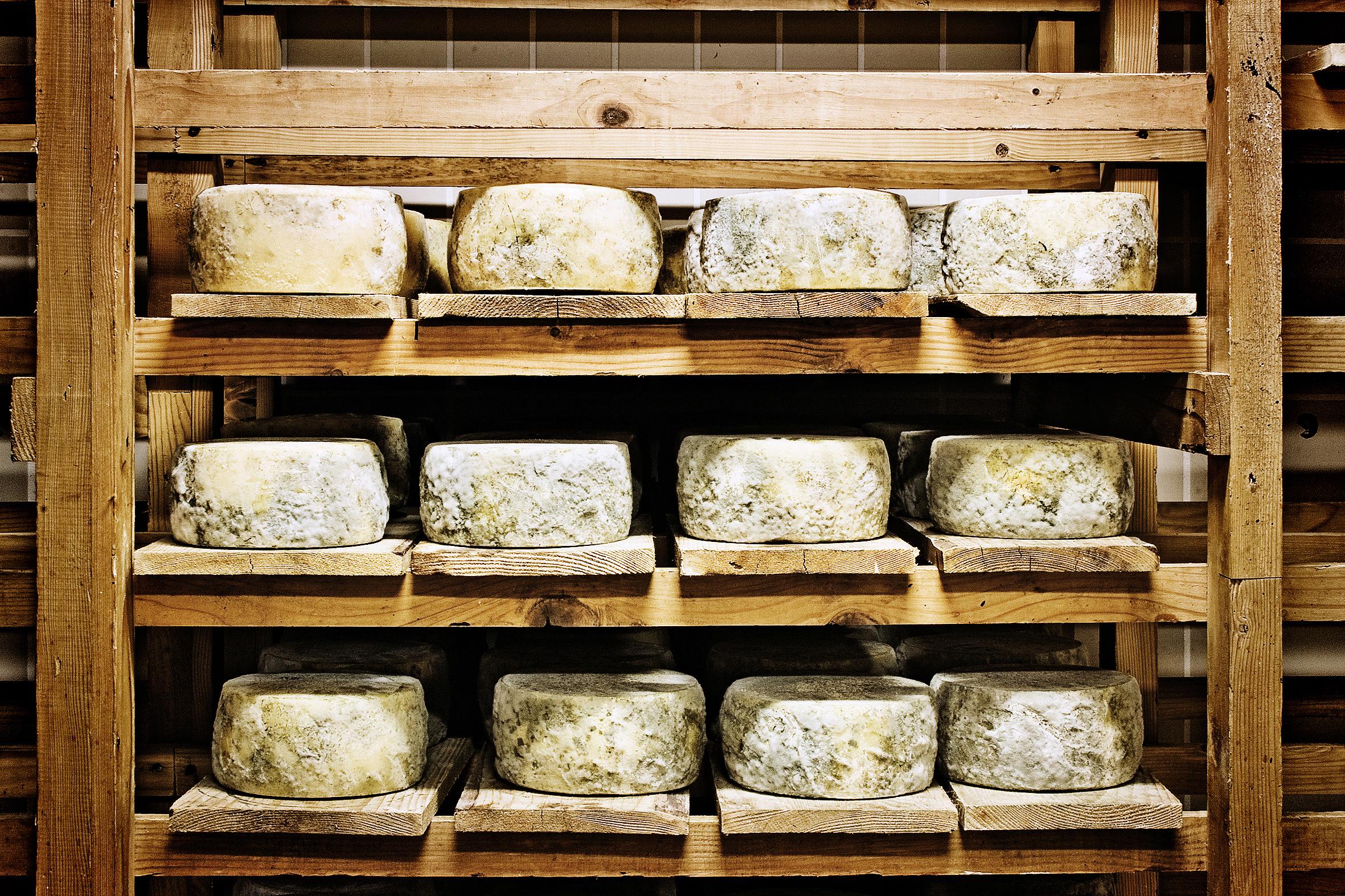 Tast de vins amb Formatges del Pirineu – XERIGOTS